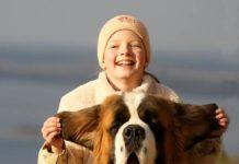 ТОП-5 гігантських порід собак з поступливим характером - today.ua
