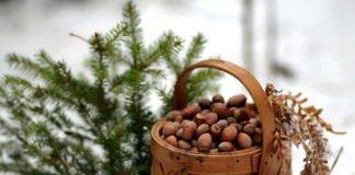 24 января: какой сегодня праздник и что нельзя делать - today.ua