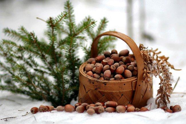 24 січня: яке сьогодні свято і що не можна робити - today.ua