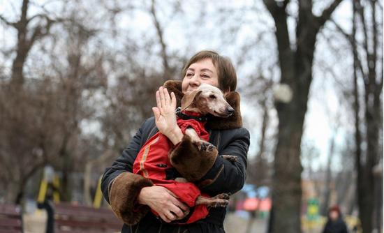У Києві зареєстрували найстарішу собаку України (фото)