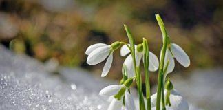 Реванш зими: на вихідних в Україну прийде різке похолодання - today.ua