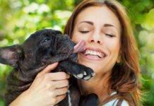 ТОП-3 породи собак, які ідеально підходять для жінок - today.ua
