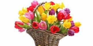 «Букетный» этикет: какие цветы подарить на 8 Марта маме, жене и коллегам - today.ua
