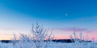 13 февраля: какой сегодня праздник и чего нельзя делать - today.ua