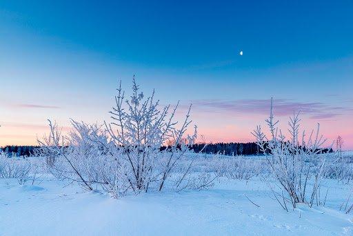 13 лютого: яке сьогодні свято та чого не можна робити - today.ua