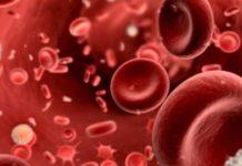Как группа крови влияет на продолжительность жизни: эксперты дали ответ - today.ua