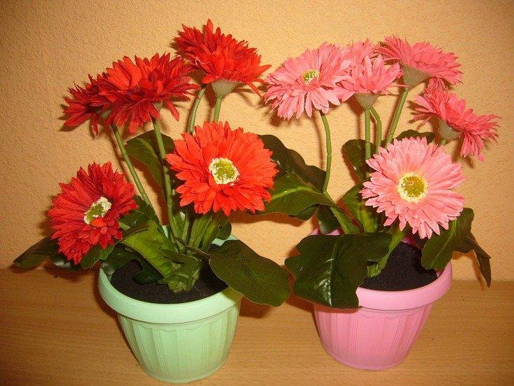 «Букетный» этикет: какие цветы подарить на 8 Марта маме, жене и коллегам