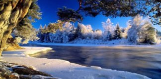 Сретение Господне 15 февраля: что нужно делать в этот день, а что строго под запретом - today.ua