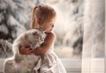 ТОП-5 найкращих порід кішок для дітей - today.ua