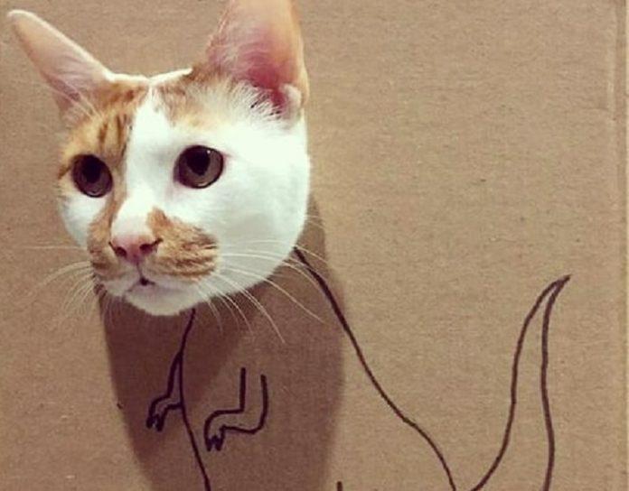 Коти-дракони захоплюють Інтернет: оригінальна стрижка тварин лякає і одночасно смішить - today.ua