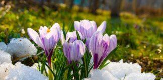 """Весняне потепління: синоптики розповіли, коли закінчаться дощі і холоди """" - today.ua"""