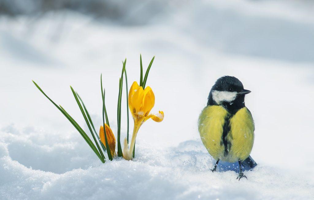 7 лютого: який сьогодні день і чому потрібно бути обережними зі словами