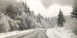 Україну завалило снігом: синоптики назвали регіони, які залишилися без світла - today.ua