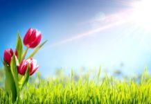 Свято 28 березня: в Олександрів день слід побоюватися пристріту і проклять - today.ua
