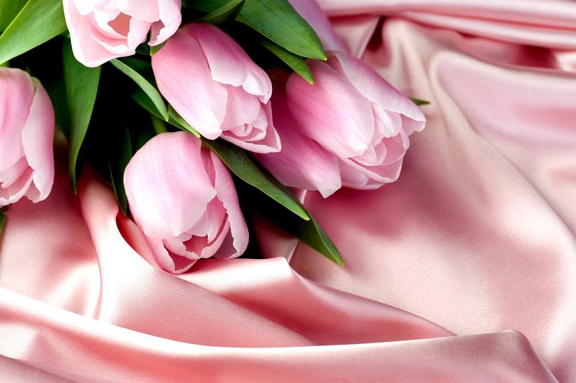 Советы эзотериков: какие тюльпаны расскажут о любви, а какие дарить опасно