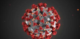 """Як підвищити імунітет проти коронавіруса – поради вчених з Великобританії"""" - today.ua"""