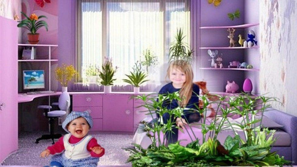 3 види кімнатних рослин, які не можна ставити в дитячій кімнаті