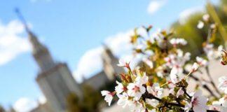 Свято 22 березня: 40 святих - що потрібно і що не можна робити, прикмети і традиції в цей день - today.ua