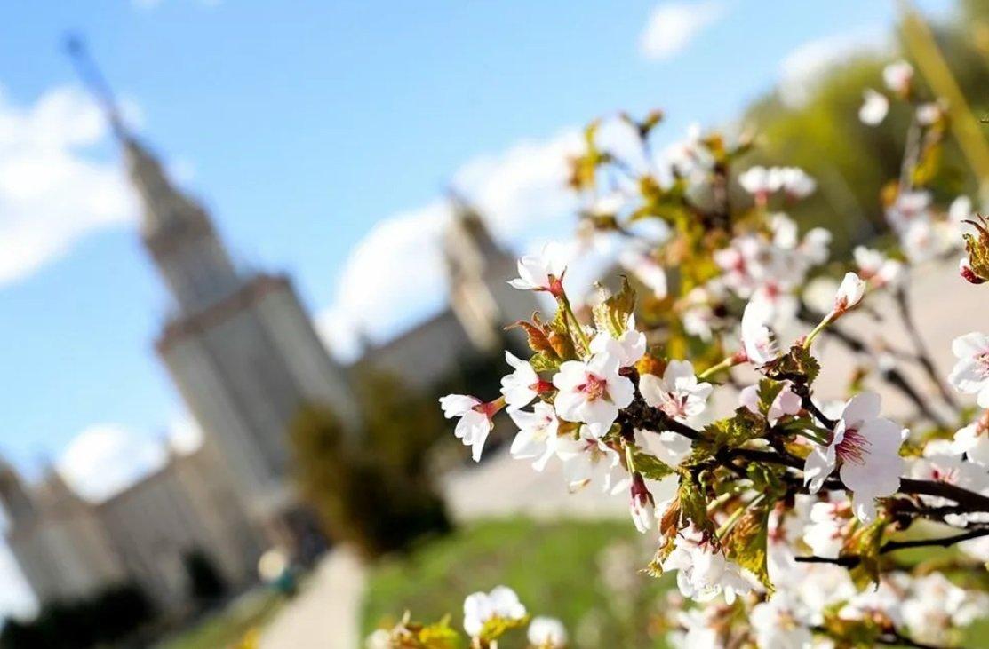 Праздник 22 марта: 40 святых - что нужно и что нельзя делать, приметы и традиции в этот день - today.ua