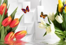 Поради езотериків: які тюльпани розкажуть про кохання, а які дарувати небезпечно - today.ua