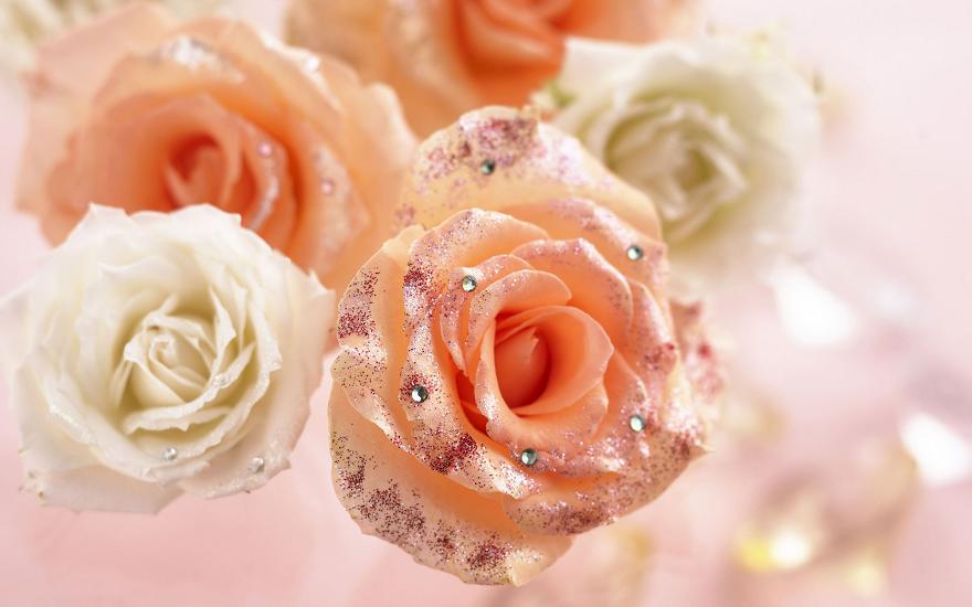 Шість заборон для букетів: які квіти не можна дарувати жінкам на 8 Березня