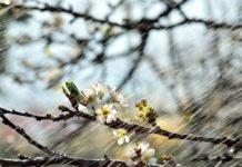 Украину снова накроет непогода: когда и в каких областях ждать похолодание - today.ua