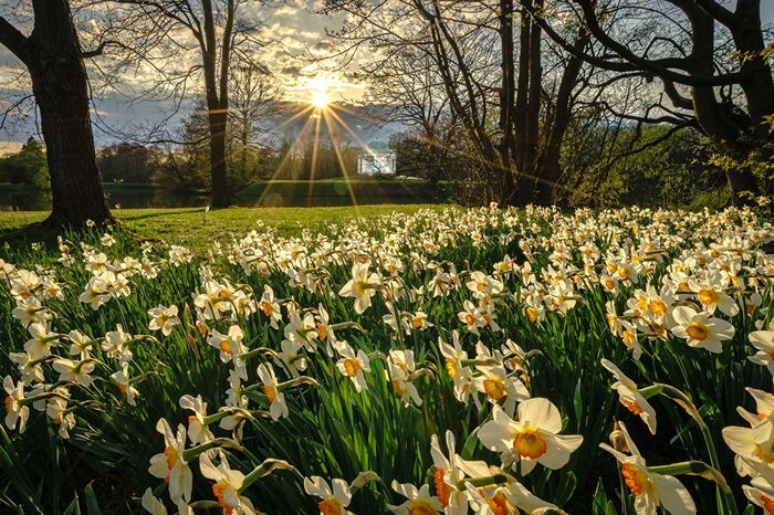 День весняного рівнодення 20 березня: як відзначати свято і що не можна робити  - today.ua