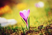 Потепление придет после Пасхи: синоптики огорчили прогнозом на апрель - today.ua