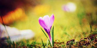 Потепління прийде після Великодня: синоптики засмутили прогнозом на квітень - today.ua