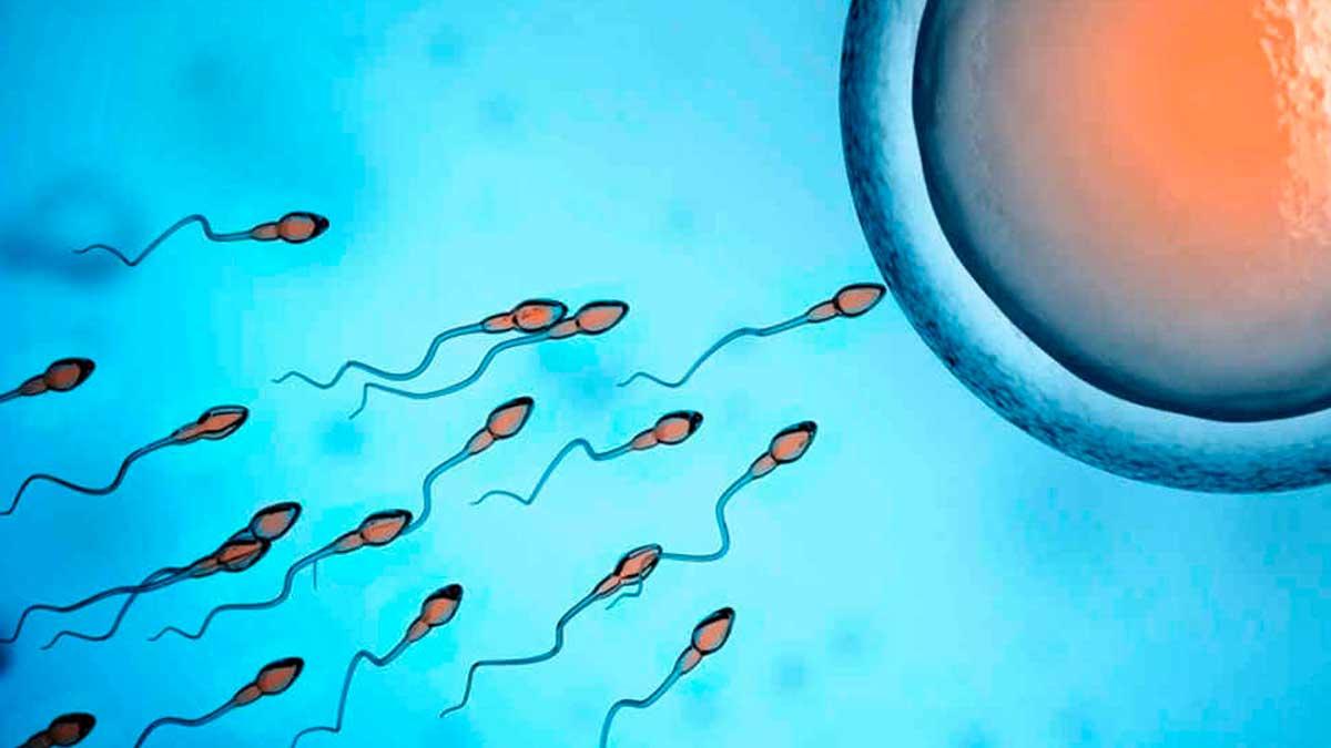Китайські вчені: коронавірус призводить до чоловічого безпліддя