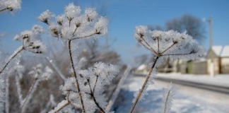 24 березня: яке сьогодні свято і що прийнято робити в цей день - today.ua