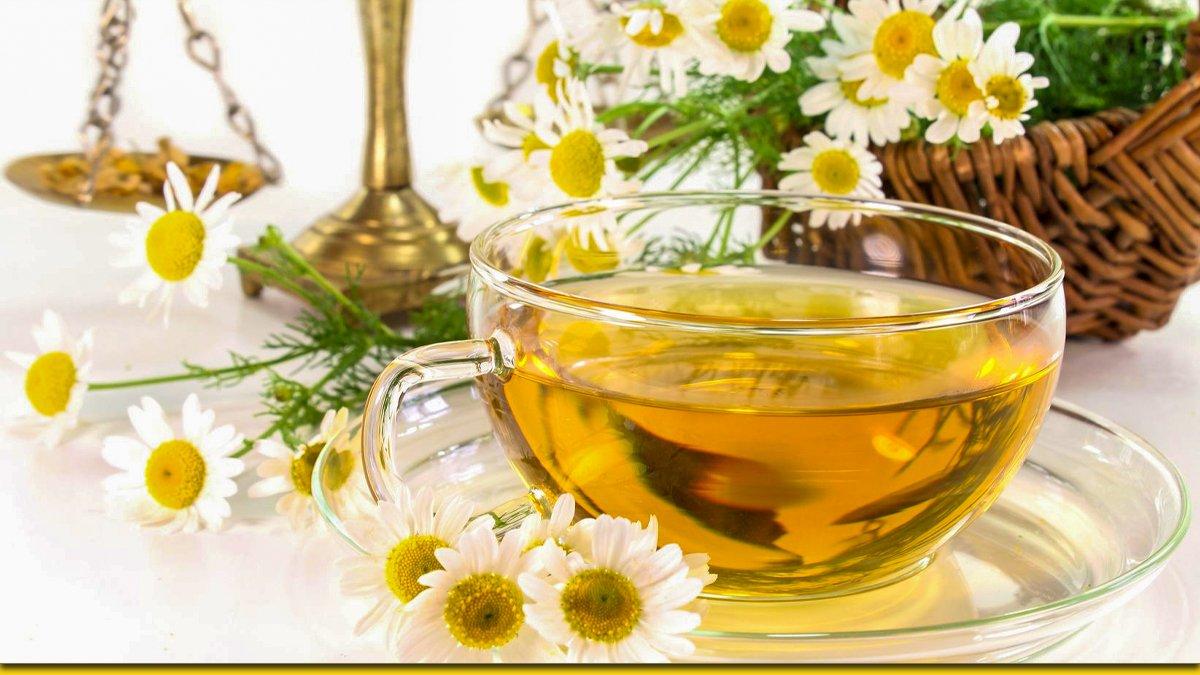 Что произойдет с организмом, если ежедневно выпивать 1-2 чашки ромашкового чая
