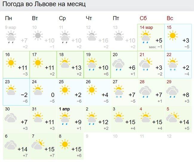 Погода в кінці березня різко зіпсується: де синоптики прогнозують морози та дощі