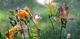 На Україну обрушаться сильні дощі та вітер: прогноз погоди на найближчий уїк-енд - today.ua