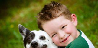 """ТОП-5 маленьких порід собак, що не вимагають догляду: ідеальний вибір для сімей з дітьми"""" - today.ua"""
