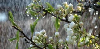 Погода на початок травня 2020: зливи і грози обрушаться на ряд регіонів України - today.ua
