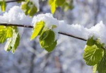Погода в Україні різко зміниться: синоптики назвали області, які заллють дощі - today.ua