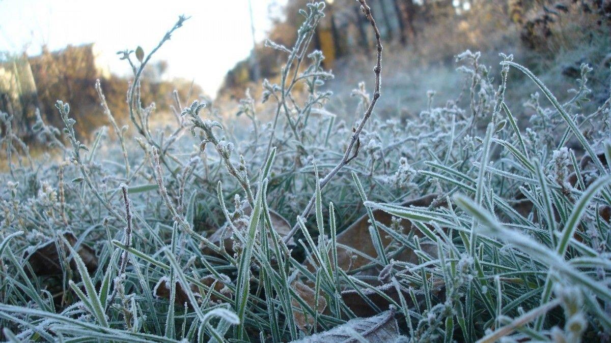 Холод і заморозки: прогноз погоди на травень 2020 ошелешив українців