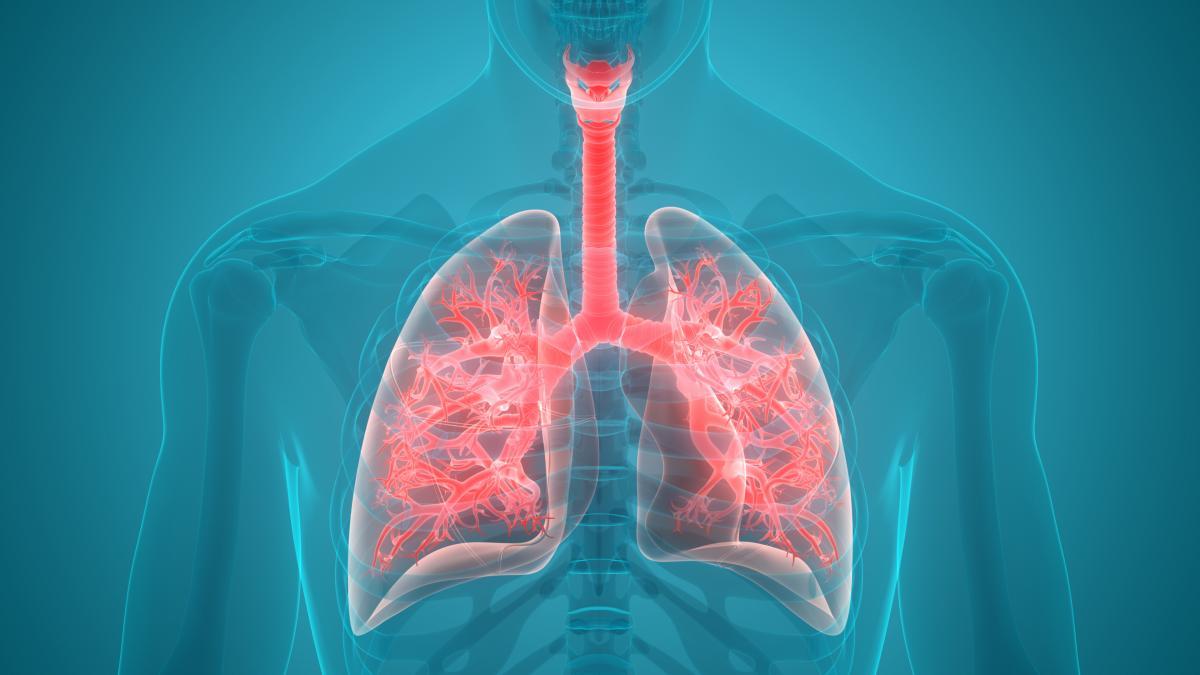 Названо фрукт, який допоможе позбутись бронхіту і хвороб легенів - today.ua