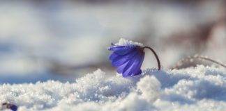 """Резкое и продолжительное ухудшение погоды прогнозируют в Украине до самой Пасхи"""" - today.ua"""