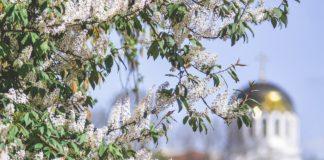 Свята 2 квітня: в день Фотинії Самарянки молилися про дарування здоров'я - today.ua