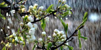 Україну накриють дощі: період потепління зміниться різким погіршенням погоди - today.ua