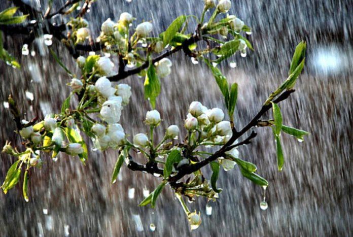 Украину накроют дожди: период потепления сменится резким ухудшением погоды - today.ua