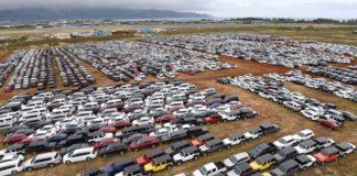 """Коронавірус: близько 20 000 машин кинули """"вмирати"""" у полі - today.ua"""