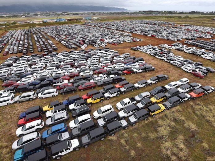 """Коронавірус: близько 20 000 машин кинули &quotвмирати"""" у полі - today.ua"""