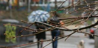 Зима в квітні: Україну накриють зливи і сильне похолодання - today.ua