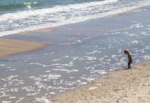 Послаблення карантину: коли відкриються пляжі та дозволять купатись у водоймах - today.ua
