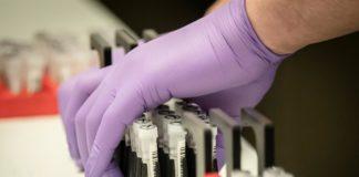 Імунітет до коронавірусу: медики назвали категорію людей, яким не страшний COVID-19 - today.ua