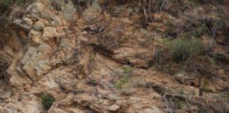 """Тест на уважність: знайдіть оленів серед скель за 20 секунд"""" - today.ua"""