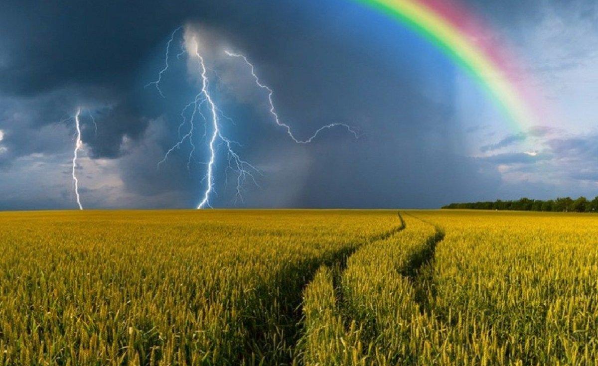 Град, шквалы и грозы: прогноз погоды на июнь 2020 в Украине